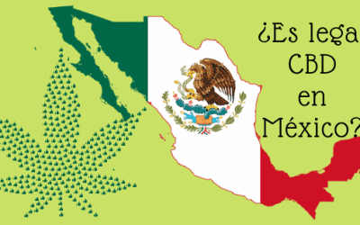 Status legal del CBD en México