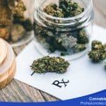 cursos online cannabis