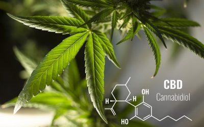 cannabidiol, propiedaded y efectos secundarios